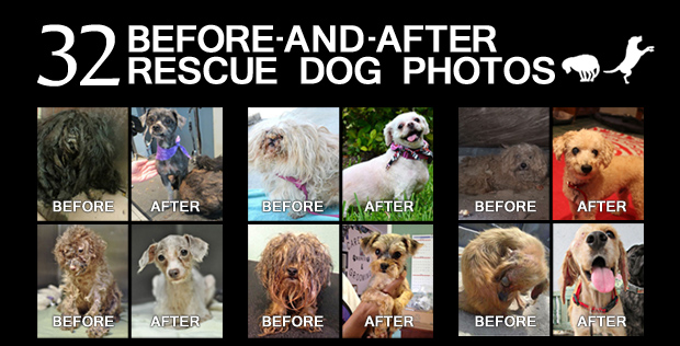 featured-image-before-and-after