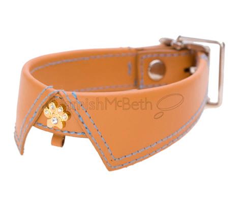 Star Dog Collar Uk