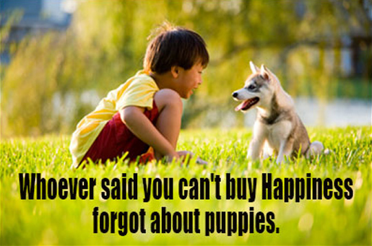 Quotes About Dog Friendship Brilliant 28 Funny Dog Quotes  Spartadog Blog