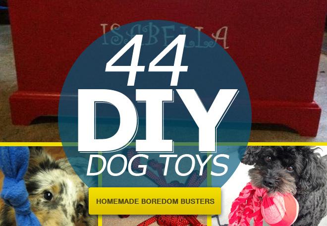 da70ca4b7 44 Really Cool Homemade DIY Dog Toys Your Dog Will Love - SpartaDog Blog